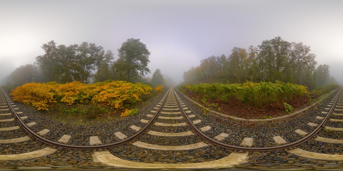 NebelSchienenWaldPanorama